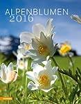 Kalender Alpenblumen 2016