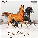 The Magic of Horses 2014 Wall Calendar