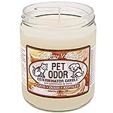 Pet Odor Exterminator Candle, Creamy Vanilla,13 oz