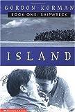 Shipwreck (Island)
