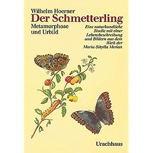 Der Schmetterling. Metamorphose und Urbild. Eine naturkundliche Studie mit einer Lebensbes