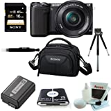Sony NEX-5TL NEX5TLB NEX-5TL B 16 MP Compact Interchangeable Lens Digital Camera Kit with 16-50mm Power Zoom Lens with NFC and Wifi sharing (Black) + Lithium Battery for NP-FW50 + Sony Class 10 16GB SD card + All in One High Speed Card Reader + Sony Camcorder Case + Deluxe Accessory Kit