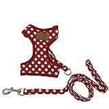 選べる 8種 3サイズ ハーネス リード セット 小型犬 猫用 【DauStage】 トートバッグ付き (M(胸囲30~38cm), ドット柄レッド)
