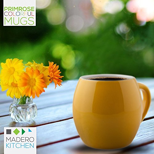 Primrose Colorful Mugs By Madero Kitchen