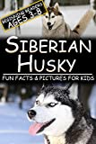 Siberian Husky: Fun Facts & Pictures For Kids, Beginning Readers Ages 3-8