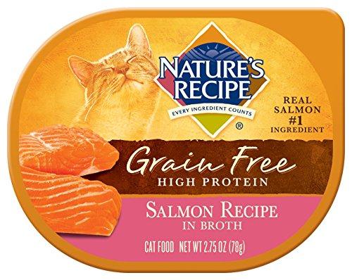 Nature's Recipe Grain Free Salmon Recipe In Broth