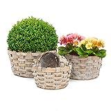 Relaxdays Pflanzkörbe rund flach 4er Set dekorativer Holzkorb zum Bepflanzen Pflanzkorb Set für Haus und Garten