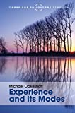 Experience and its Modes (Cambridge Philosophy Classics)