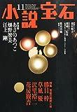 小説宝石 2014年 11月号 [雑誌]