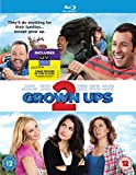 Grown Ups 2 [Blu-ray] [2013]