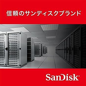 SanDisk SSD Extreme PRO 960GB [国内正規品] メーカー10年保証付 SDSSDXPS-960G-J25