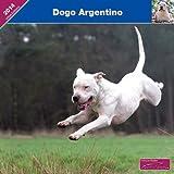 KALENDER 2014 (Wandkalender) - DOGO ARGENTINO - AFFIXE - FRANCOIS NICAISE