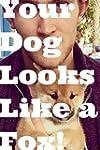 Your Dog Looks Like A Fox!: (random)...
