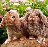 Lop-Eared Rabbits 2013 Calendar