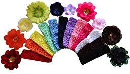 Baby and Toddler Girls 23 Piece Silk Flower Mix and Match Crochet Headband Gift Set