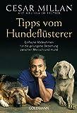 Tipps vom Hundeflüsterer: Einfache Maßnahmen für die gelungene Beziehung zwischen Mensch und Hund