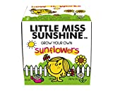 Mr Men Little Miss Sunshine Grow Kit - Multi-Colour