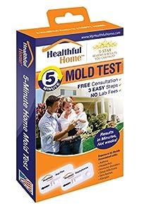 Healthful Home Minute Mold Test Aspergillus Penicillium