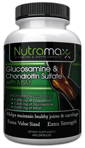 Glucosamine Sulfate and Chondroitin Sulfate with MSM - 450 Capsules