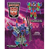 Galvatron and Thundercracker Shattered Glass Transformers Botcon Exclusive Action Figure