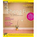 """Sheng Fui: Erf�lltes Leben dank fern�stlicher Leerevon """"Lorenz Meyer"""""""