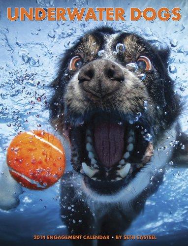 Underwater Dogs 2014 Engagement Calendar