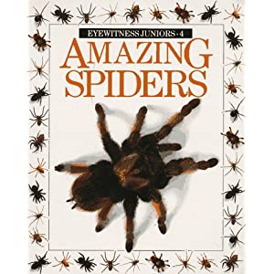 Amazing Spiders book cover