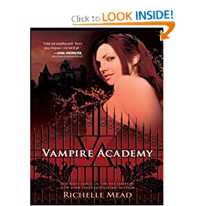 vampire academy book 2 free pdf download