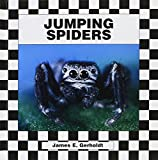 img - for Jumping Spiders book / textbook / text book