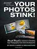 Your Photos Stink!: David Buschs Lessons in Elevating Your Photography from Awful to Awesome
