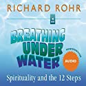 Breathing Under Water: Spirituality and the 12 Steps  by Richard Rohr