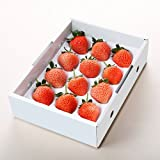 宮城県産 いちご 桃薫いちご とうくん苺 12?18粒入り 化粧箱入り