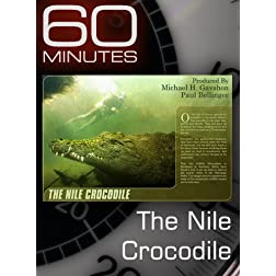 60 Minutes - The Nile Crocodile