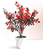 Miracle Retail Artificial Plant with Pot(32 cm, Red)