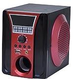 Palco 900 Speaker