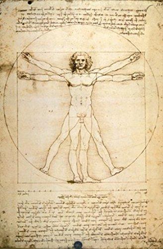 Set: Leonardo Da Vinci, Vitruvian Man Vi Poster (36X24 Inches) And 1X 1Art1 ® Collection Poster front-697160
