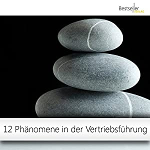 12 Phänomene in der Vertriebsführung Hörbuch
