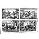 Impresión Antigua de los Elefantes Africanos 1881 del Lince de Suráfrica Manekango
