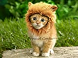 Prymal Lion Mane Dog Cat Costume. This Pet Costume Turns Your Cat or Small Dog Into a Ferocious Lion King! (Please be aware of fake products from other sellers)