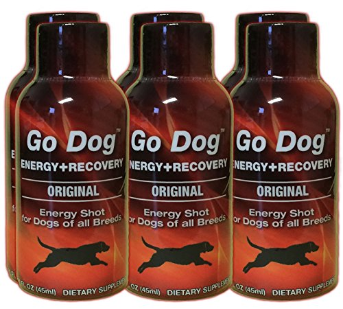 Go Dog Energy And Recovery Drink For Dogs, 2-Ounce Bottle, 6-Pack