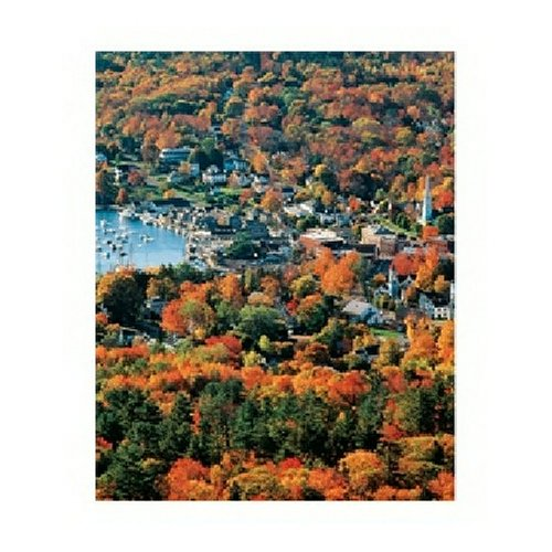 Springbok Autumn Harbor 1500 Piece Jigsaw Puzzle