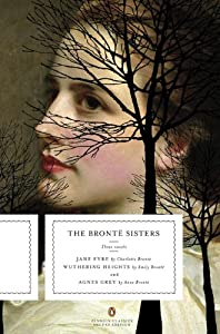 The Bronte Sisters: Three Novels book