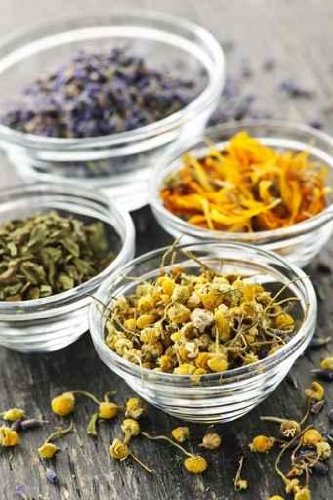 Dried Medicinal Herbs - 18
