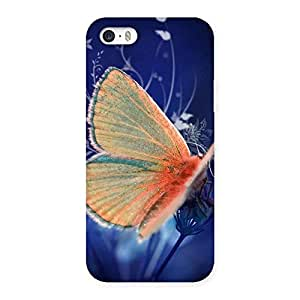 Yellow Thin Butterfly Back Case Cover for iPhone 5 5S