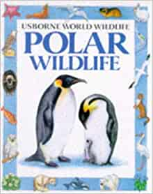 Polar Wildlife (Usborne World Wildlife): Kamini Khanduri