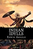 img - for Indian Idylls book / textbook / text book