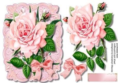 Rose rosa su un tappeto con foglie, da Ceredwyn Macrae