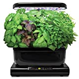 Miracle-Gro AeroGarden International Basil Seed Pod Kit (6-Pod)