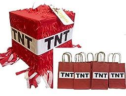 TNT Pinata & 12PK Party Favor Bags Fun Pack