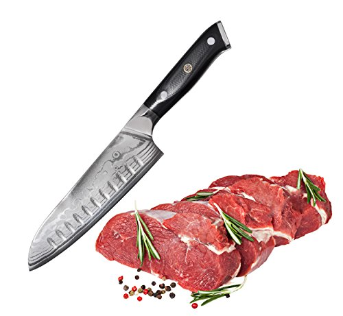 "Bruntmor, Tokuso Series VG10 7"" Santoku Knife Super Steel 67 Layer High Carbon Damascus Stainless Steel - Razor Sharp, Superb"
